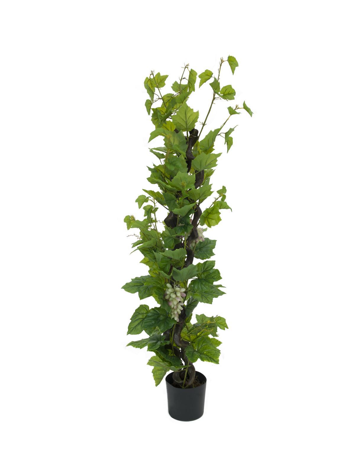 Piante di vite vite finta con uva 160cm 183 piante finte fiori for Uva fragola in vaso