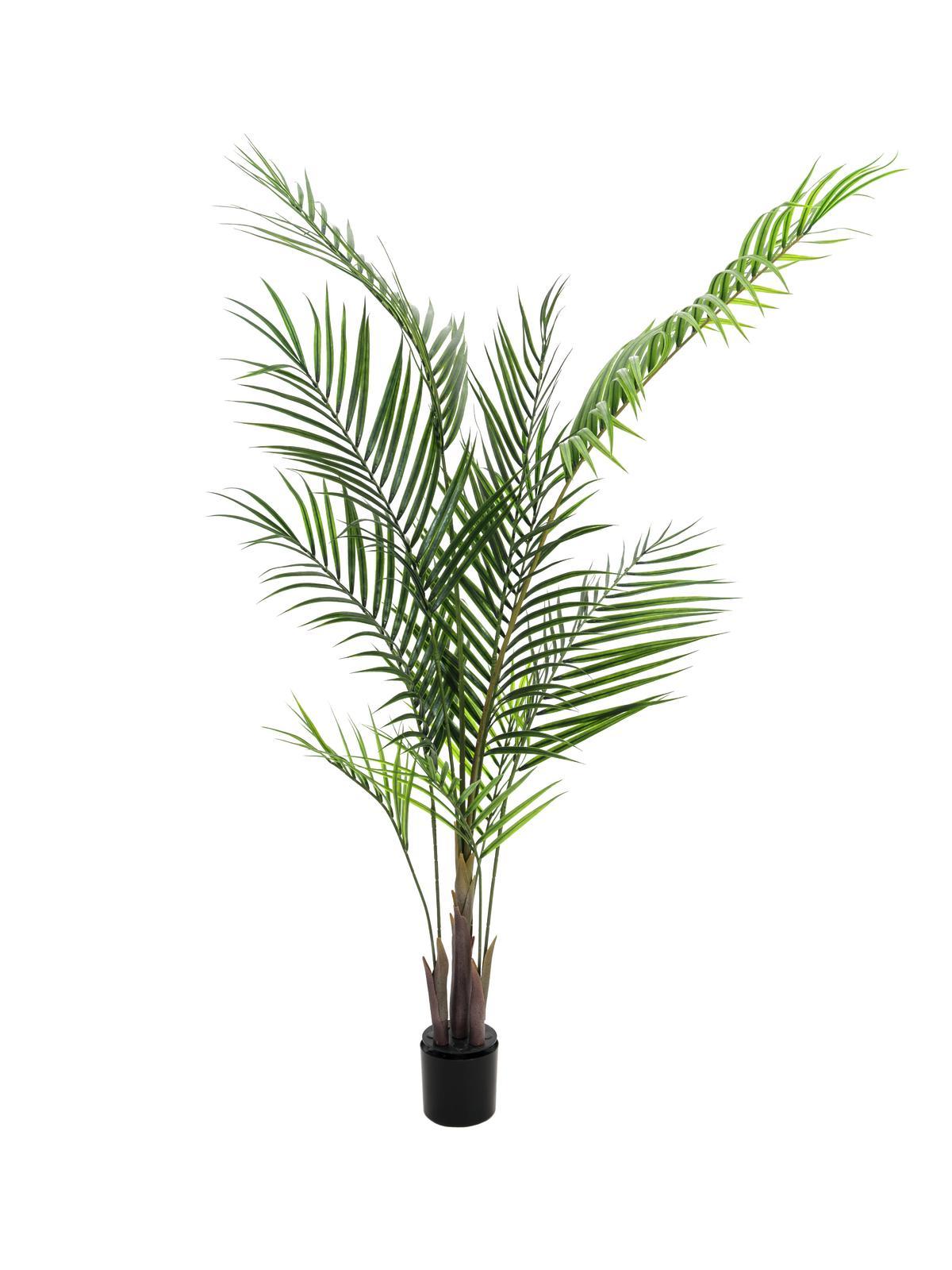 Palma finta areca 165cm piante finte fiori artificiali for Piante rampicanti finte
