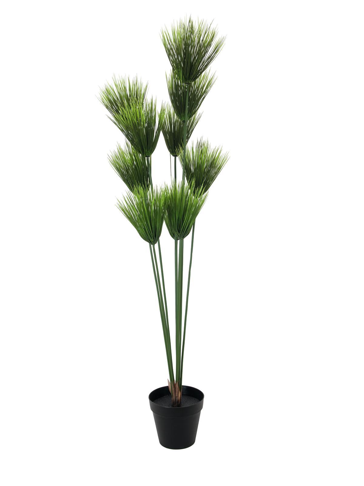 Papiro 150cm piante finte fiori artificiali fedeli for Piante rampicanti finte